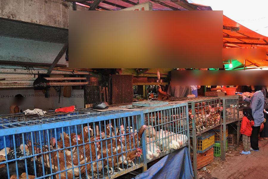 Kerja Di Pasar Ayam Lepas Syarikat Melingkup, Lelaki Kongsi Pengalaman 'Ngeri'