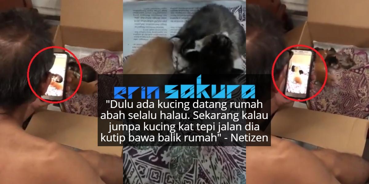 Konon Dulu Nak Letak Di Pasar, Ramai Dedah Bapa Cepat 'Ubah Hati' Dengan Kucing