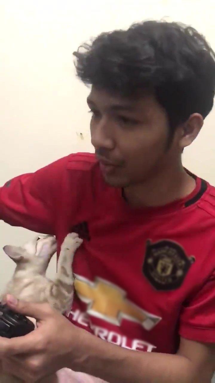 [VIDEO] Sampai Ketiak Pun Nak Dihidu, Pemuda Pelik Dengan Aksi Kucing Ini
