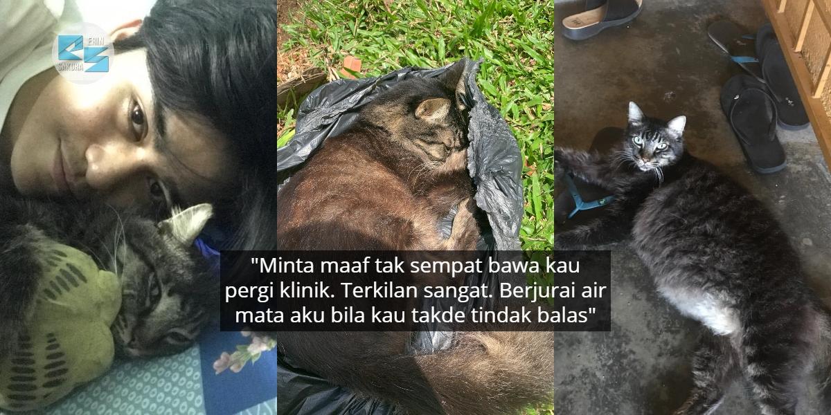 """Terima Kasih Bagi Kenangan..""-Pemuda Menangis Masa Nak Tanam Kucing Kesayangan"