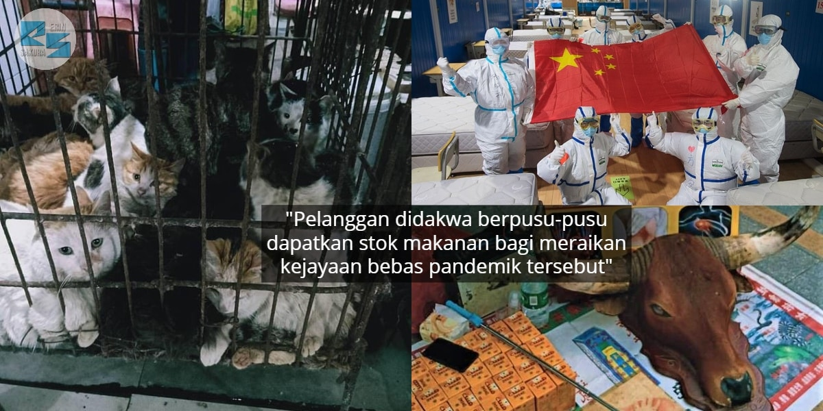 Ibarat Tak Serik Sebar Virus, Pasar Di China Aktif Semula Jual Haiwan Eksotik