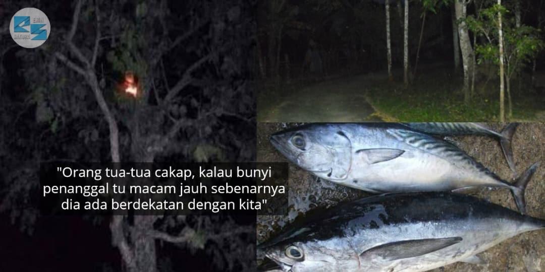Lelaki Panik Keluarga Dikejar Penanggal, Rupanya 'Ikan Tongkol' Menjadi Punca..