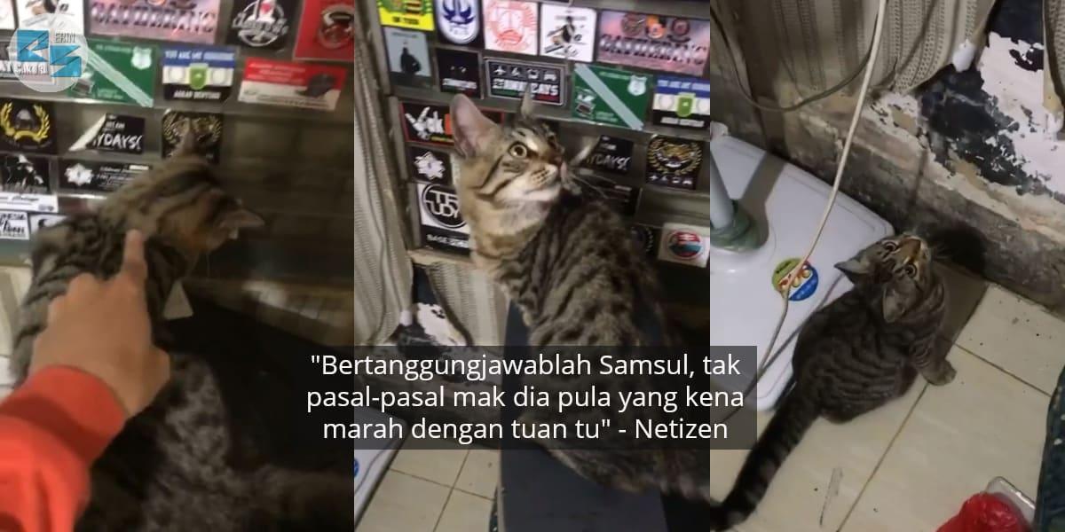 [VIDEO] Nyorok Lepas Rosakkan WiFi, Tuan Bebel Minta Kucingnya Bertanggungjawab