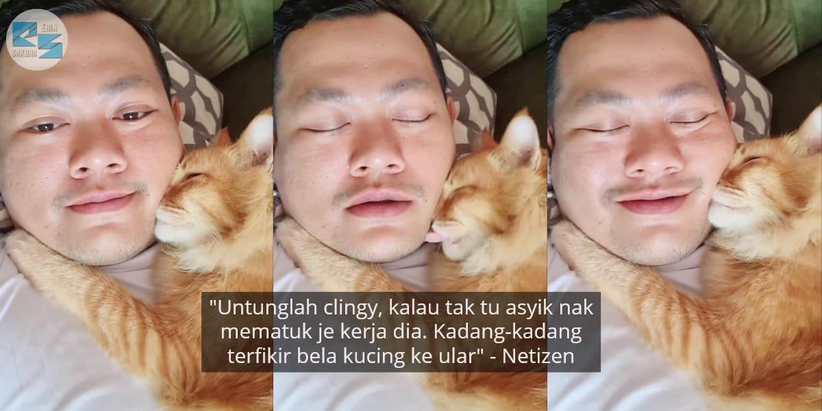 "[VIDEO] ""Sayang Abang Tak?"" – Respon Manja Kucing Oyen Ini Buat Ramai Cemburu"